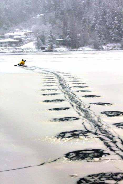 Najvtipnejšie fotografie zimy-candyman.sk (48)