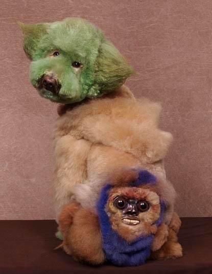 Bláznivé kozmetické úpravy psov, ktoré musíte vidieť-candyman.sk (12)