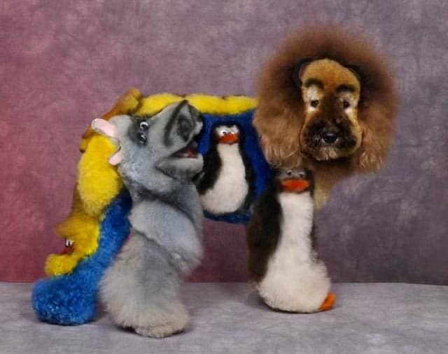 Bláznivé kozmetické úpravy psov, ktoré musíte vidieť-candyman.sk (7)