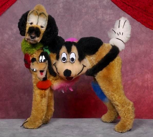 Bláznivé kozmetické úpravy psov, ktoré musíte vidieť-candyman.sk (9)