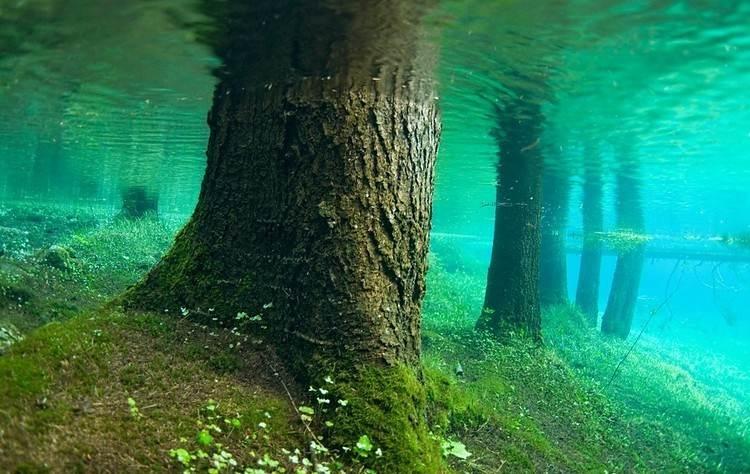 Prírodný park pod vodou, pozrite si rakúsky prírodný fenomén-candyman.sk (0)