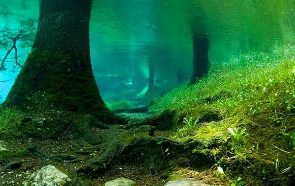 Prírodný park pod vodou, pozrite si rakúsky prírodný fenomén-candyman.sk (13)