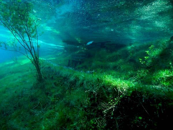 Prírodný park pod vodou, pozrite si rakúsky prírodný fenomén-candyman.sk (16)