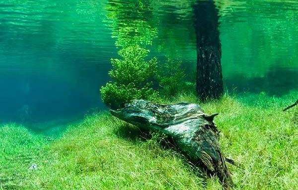 Prírodný park pod vodou, pozrite si rakúsky prírodný fenomén-candyman.sk (3)