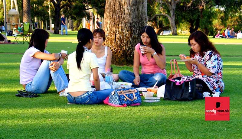 Priatelia na pikniku